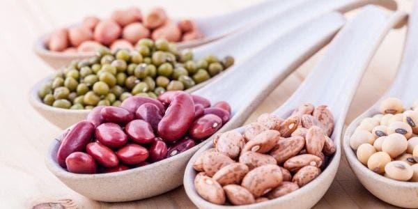 feijao tipos benefícios calorias