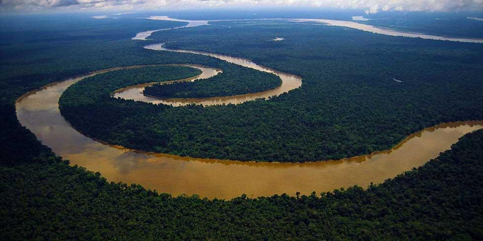 21 de março, é o Dia Internacional das Florestas