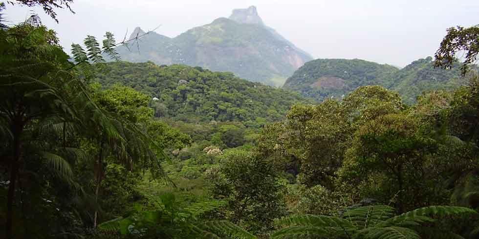 áreas de preservação podem influenciar na diminuição da pobreza?