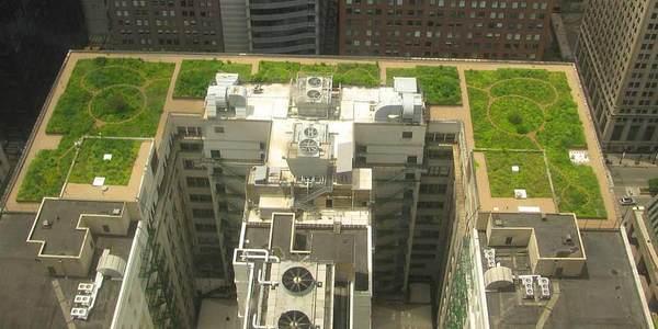 alternativa sustentável para os grandes centros urbanos