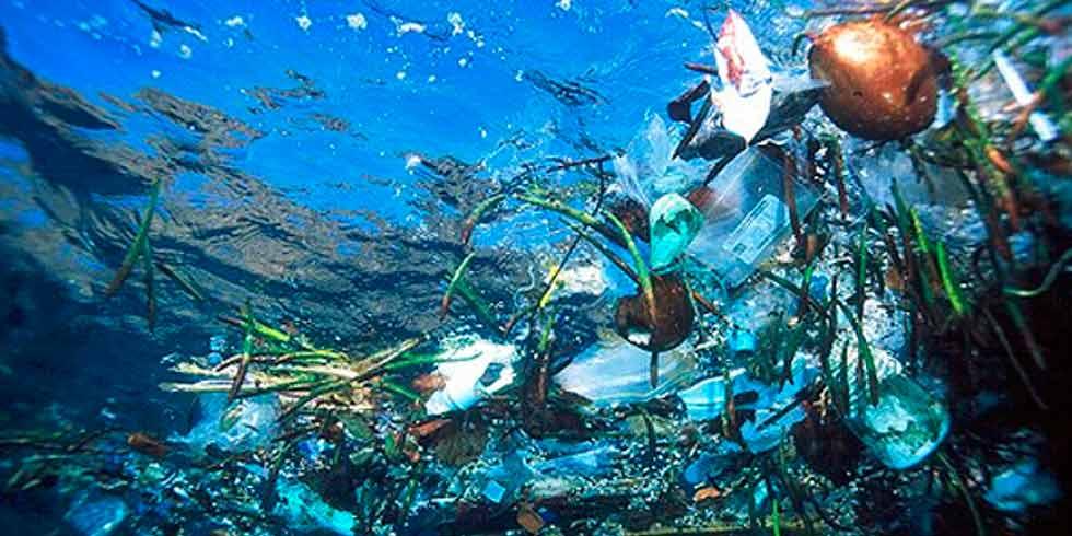 ações rápidas para salvar os oceanos