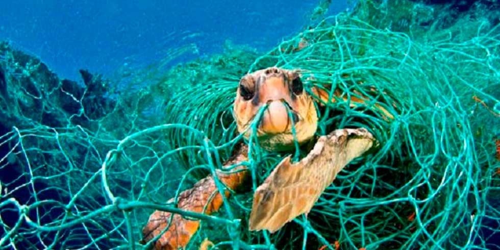 redes de pesca e a vida na água