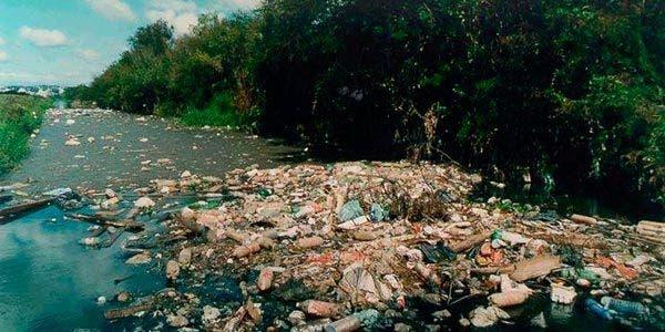 Brasil: Aumenta a degradação em áreas de proteção ambiental