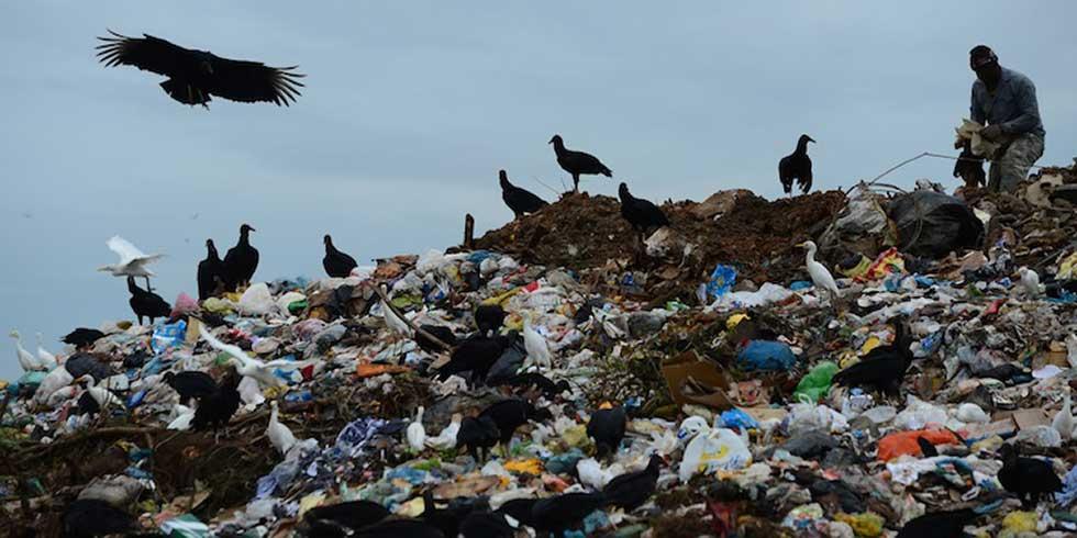 Minas Gerais: condenação municipal por dano ambiental