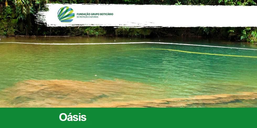 Conferência da ONU recebe projeto brasileiro de sustentabilidade