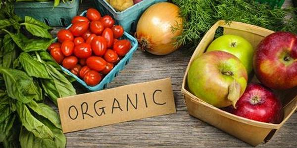 Como reconhecer se o alimento é mesmo orgânico