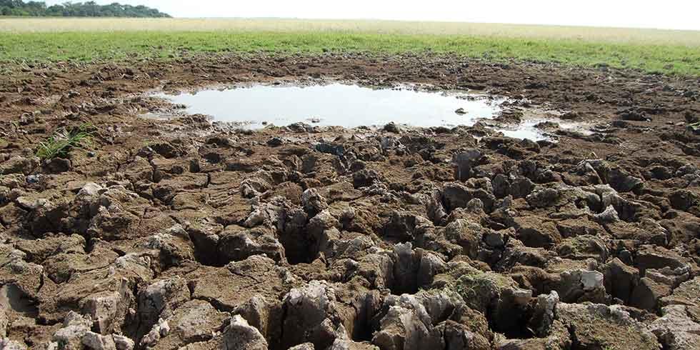Desmatamento reduz chuvas e gera crise hídrica