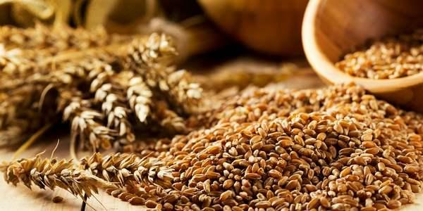 cereais integrais e quinoa para reduzir risco de morte prematura