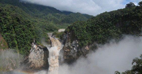 a floresta amazônica não absorve CO2 o suficiente