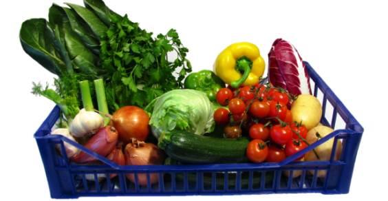 seguranca alimentar oms