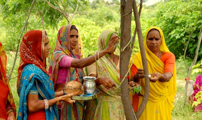 Plantando árvores na Índia