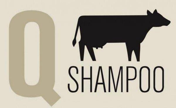 Q shampoo