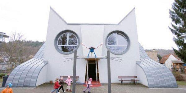 escolinha gato entrada