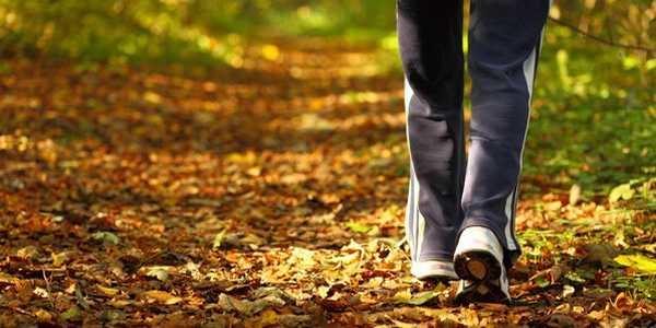 caminhada verde bom humor