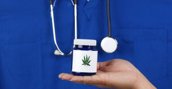 maconha medicinal cannabis