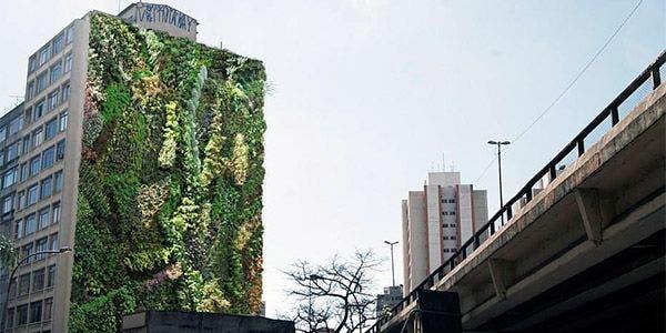 jardim vertical Minhocao