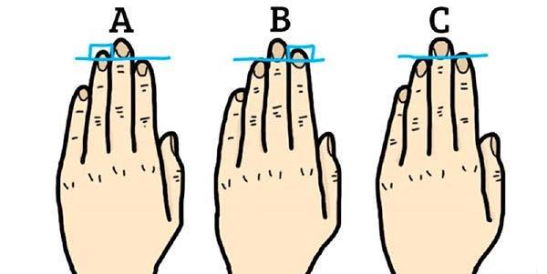 comprimento dedos das mãos