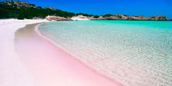 Praia rosa
