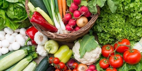 dieta vegana evitaria o desmatamento