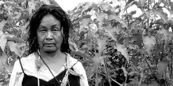 mulher-indígena