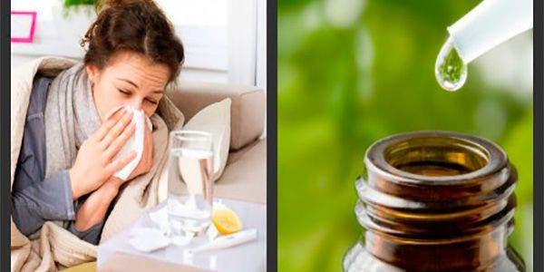oleo-essencial-resfriado