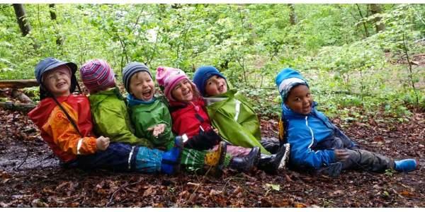 escola-floresta
