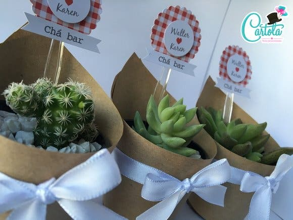 suculentas cactus decoradossuculentas cactus decorados cactos