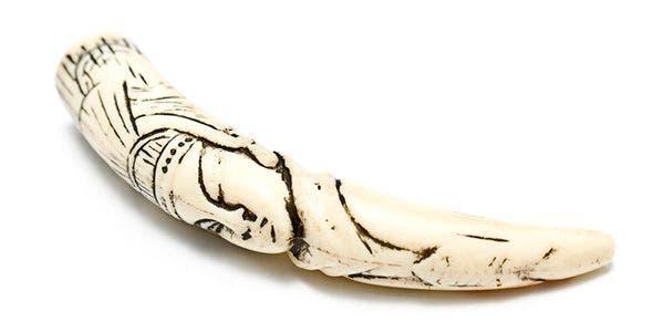 marfim chifre objeto