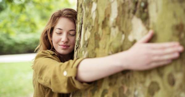 Abraçar árvores