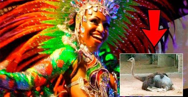 carnaval-sem-penas