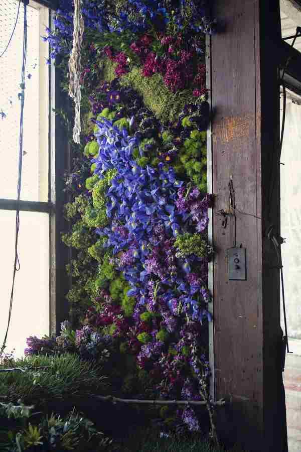 casa abandonada flores 4