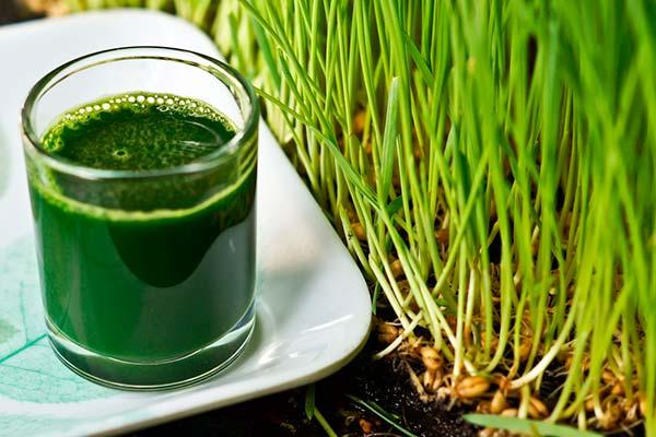 suco verde grama