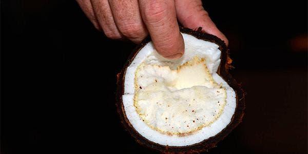 Maçã de coco