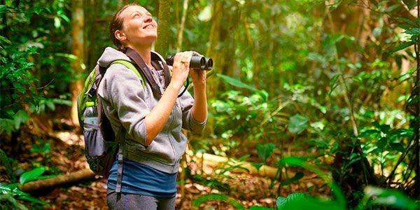birdwatching avistar brasil