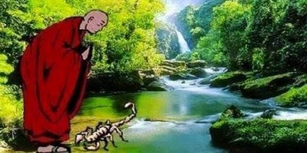 O Mestre e o Escorpião