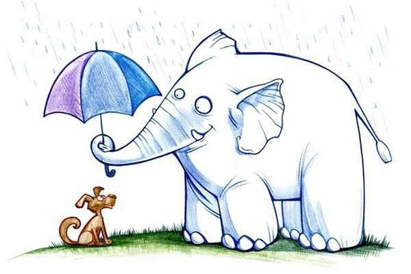 gentileza bondade compaixão