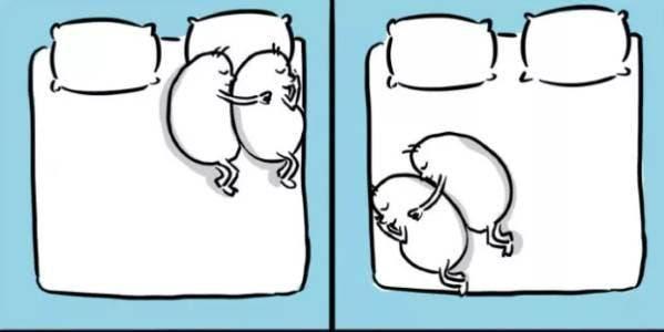 ilustraçoes amor