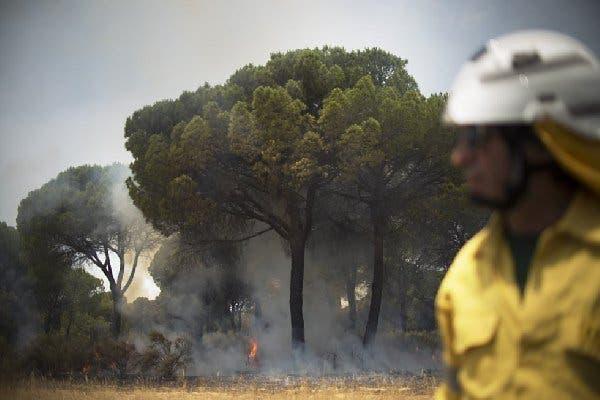 incêndio espanha 8