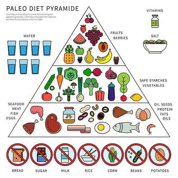 pirâmide dieta paleo