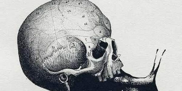 crânio ou caraco