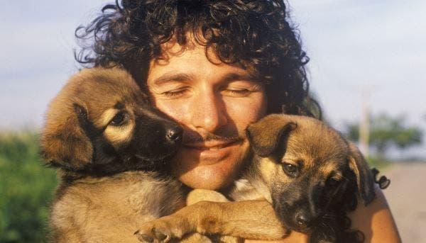 homens e cachorros