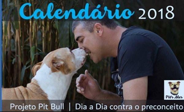 projeto pit bull