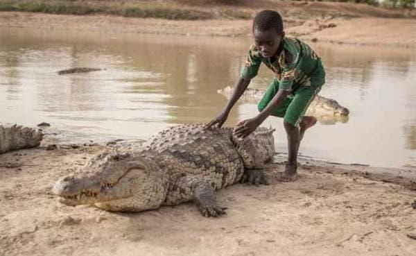 bouzule crocodilos 4jpg