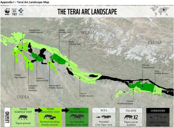 tigre mapa