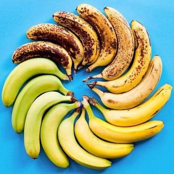 bananas maturação
