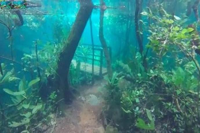 trilha submersa