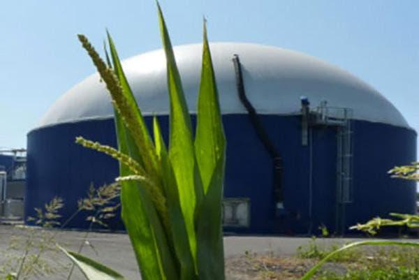 Planta de Biogás