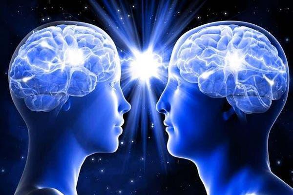 Cérebros feminino e masculino
