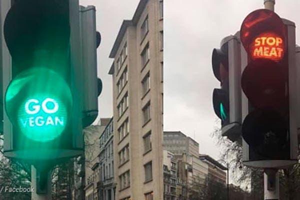 semáforo go vegan Bruxelas