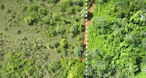 floresta costa rica 4